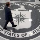 CIA vs. Gevisser Recap